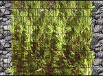 Táblás kerítésbe fűzhető Bambusz kövek között kép 250x180 cm 19 cm-es szalagból