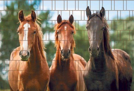 Táblás kerítésbe fűzhető Lovas kép 250x180 cm 19 cm-es szalagból