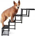 Kutyarámpa, kutyalépcső